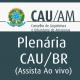 Banner 50x50 Plenaria CAUBR